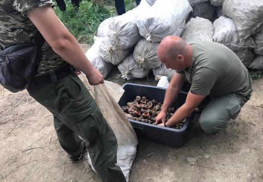 Пограничники и Госрыбагентство выявили у браконьеров 30 000 рапанов