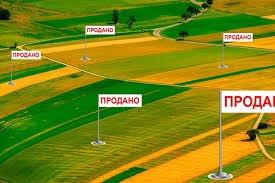 Фермеры Одесской области стали массово продавать землю