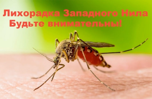 """В Украине зафиксирован случай """"экзотической"""" болезни"""