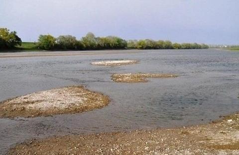 Украинские реки могут пересохнуть: наблюдается тревожная тенденция