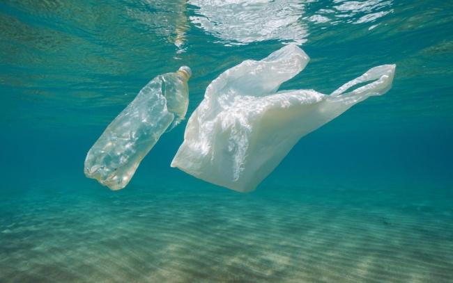 В Чёрном море до 2050 года будет больше пластика, чем рыбы - глава Минприроды