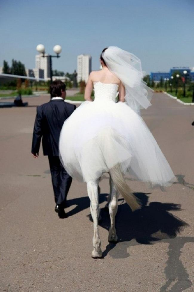 Неудачные свадебные фотографии: невозможно удержать смех!