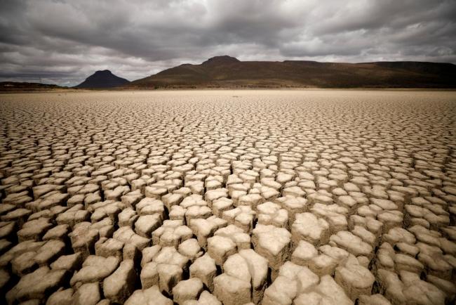 В Украине как на Карибах: учёные рассказали, каким может стать климат на Земле к 2100 году