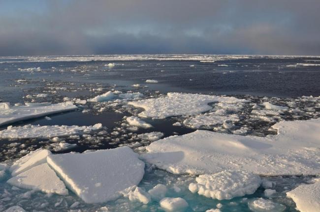 Учёные впервые попытались измерить температуру дна океана, выводы тревожат