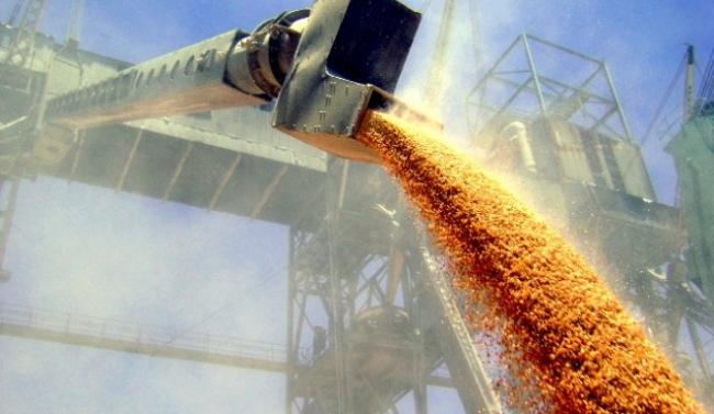Украина стала вторым крупнейшим экспортёром зерна в мире