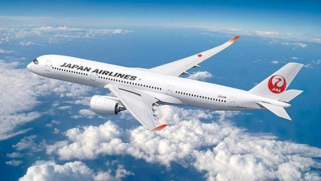 Японская авиакомпания начала заправлять самолёты биотопливом