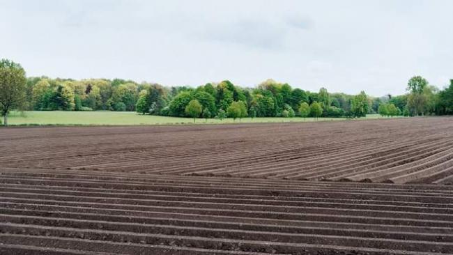 Открытие рынка земли: что повлияет на её цену и когда будут кредиты