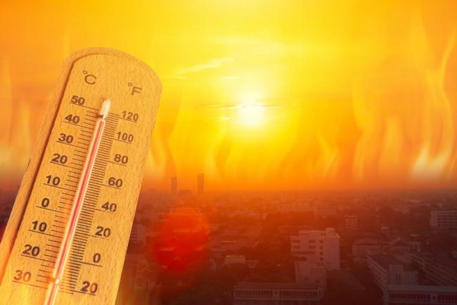 Из-за изменений климата лето может увеличиться в два раза - учёные