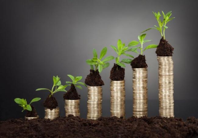 В Минэнерго поддержали законопроект о нулевом налоге на сжигание биотоплива