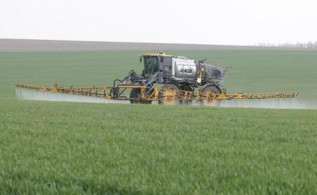 Правительство планирует ввести новое направление поддержки агропроизводителей