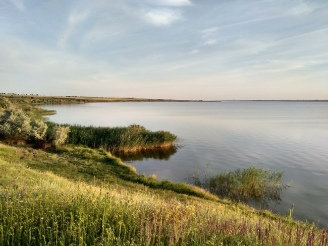 Жители Килийщины жалуются на ограничение доступа к водным объектам – пришлось вмешаться РГА