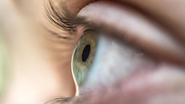 Ученые смогли за сутки восстановить зрение у слепого пациента