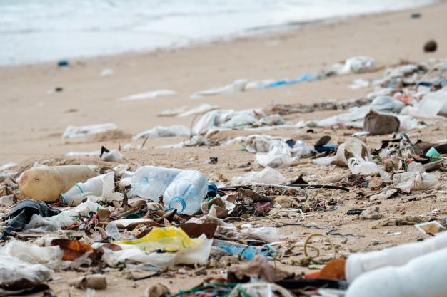 В Госэкоинспекции крайне недовольны состоянием морской воды в Затоке