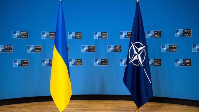 Зеленский призвал немедленно включить Украину в НАТО