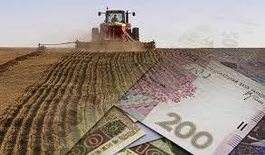 Президент подписал закон о развитии фермерских хозяйств: в первые три года после создания им будет оказываться помощь за счёт госбюджета