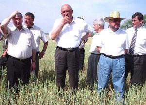 Придунавье -  в эпицентре засухи
