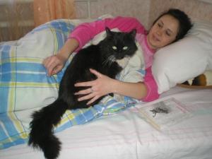 Не тащи в постель котёнка